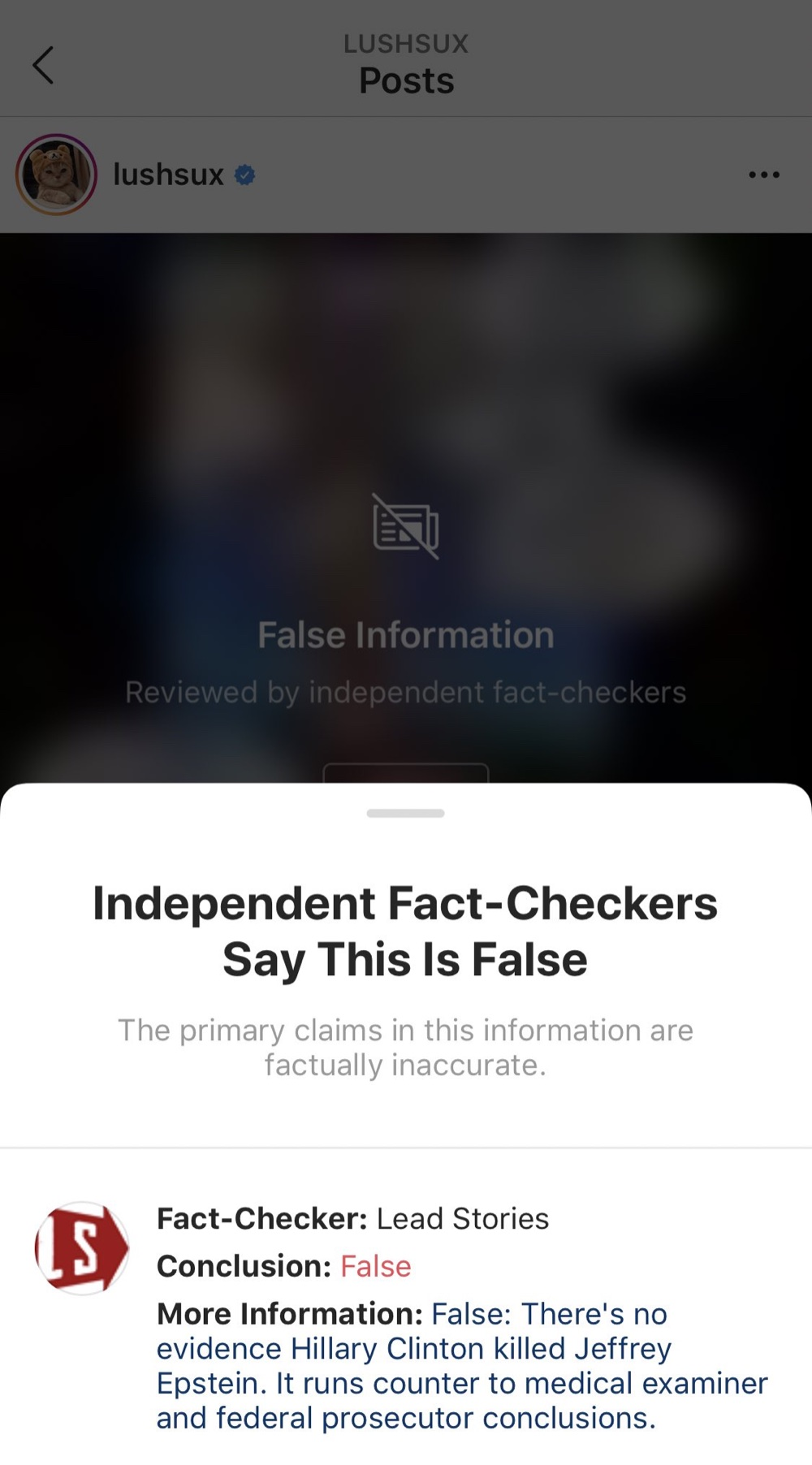"""All Instagram memes that are labeled """"False"""" now come with this information panel (Instagram - @lushsux)"""