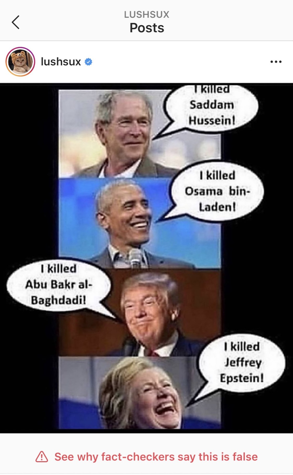 A Jeffrey Epstein meme that's been fact-checked, labeled false, and hidden by Instagram (Instagram - @lushsux)