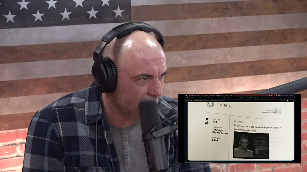 """Rogan was shocked by the results of a background check report which flagged a Twitter user's liked tweets as """"good"""" or """"bad"""""""